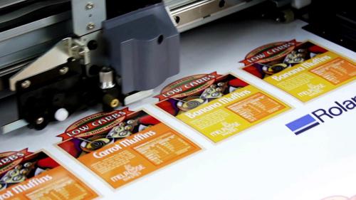 Зүсэлттэй стикер хэвлэл Зүсэлттэй стикер хэвлэл / Print and Cut / PrintCut 14